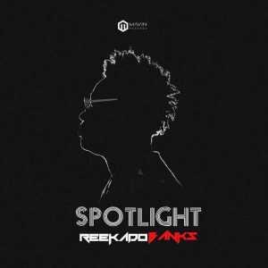 Reekado Banks - Turn The Light On